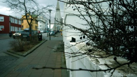 - a walk around reykjavik unearths a lot of treasures -