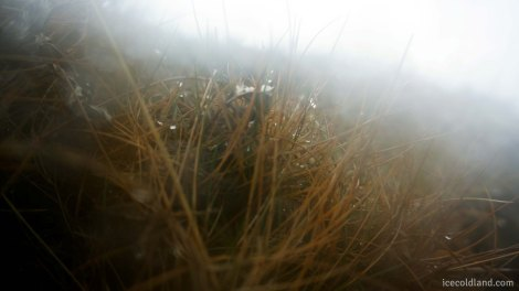 - major lens filter fog up -